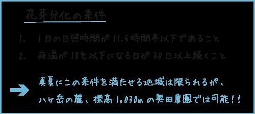 hattori_02